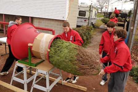 Easton Baseball players bail one of the 20 trees that were delivered to needy families