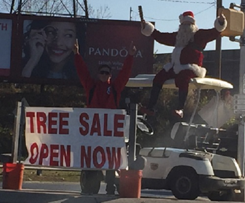 Easton Baseball Christmas Tree Sale